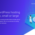 Kinsta Hosting Review 2019 – A Powerful Managed WordPress Hosting