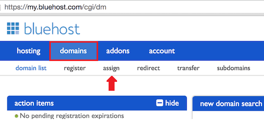 Assign Domain to BlueHost